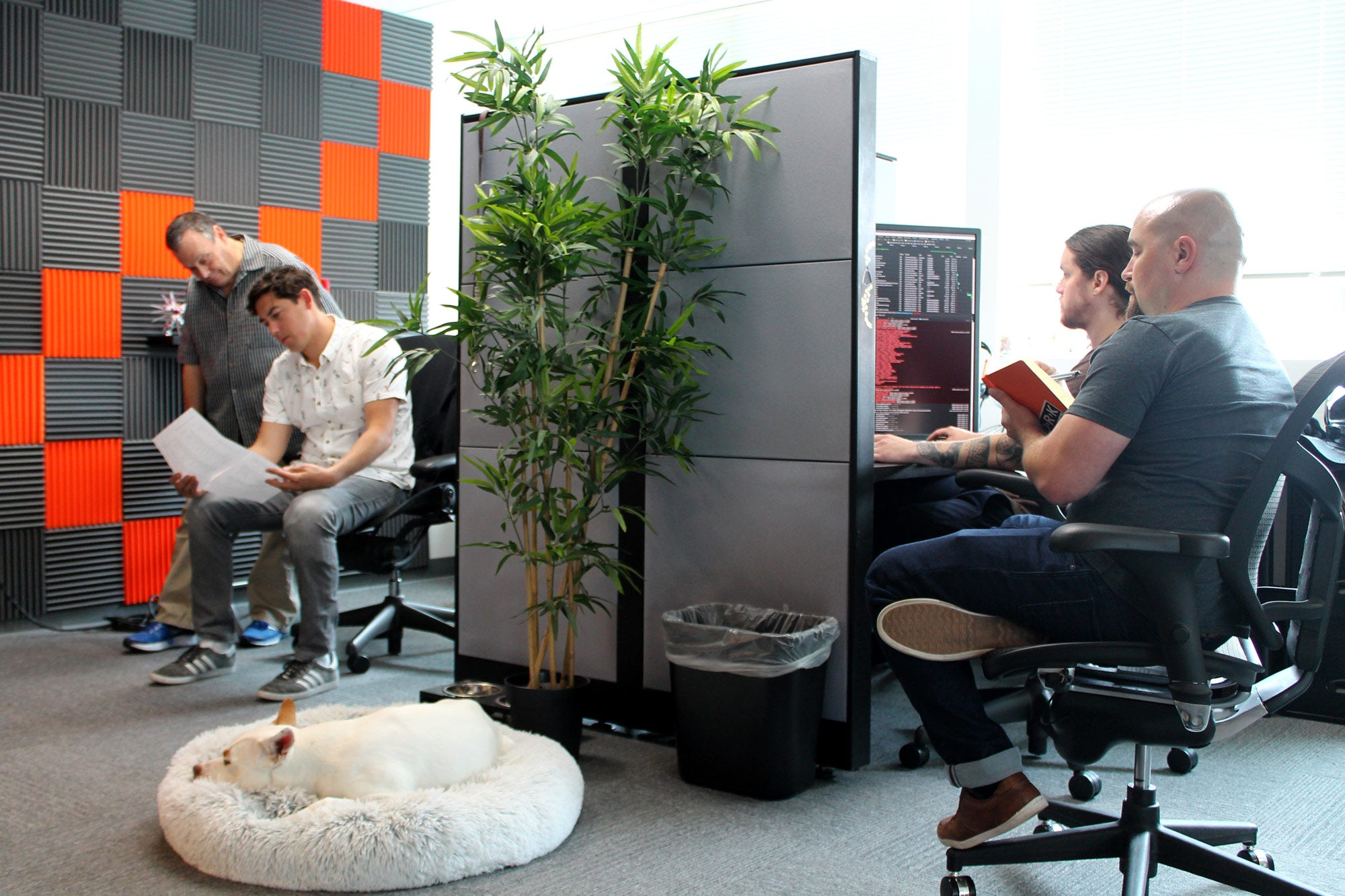 Working in the office at Zesty.io