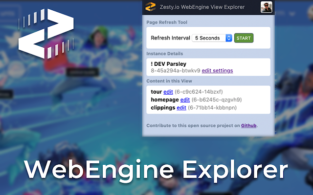 webengine-view-explorer-zestyio-chrome-plugin.png